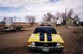 1972ss_yellow_3.JPG