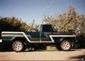 1977_f_250_green_w_stripes.JPG