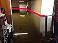 Flood1415.JPG