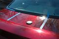 Impala6.jpg