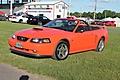 Mustangs_020_1068_x_712_.jpg